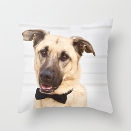 Beautiful rescue dog wearing a bow tie! Throw Pillow
