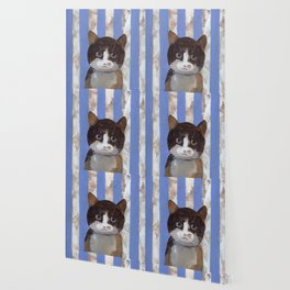 Missy or A Cat with Blue Stripes Wallpaper