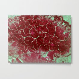 Nature paints serie 3 Metal Print