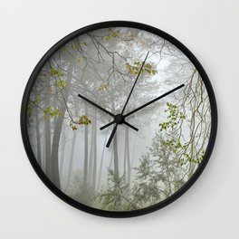 Dream forest. Sierras de Cazorla, Segura y Las Villas Natural Park. Square Wall Clock