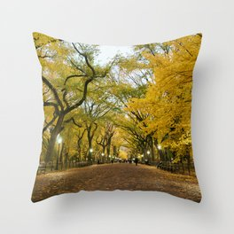 Central Park New York City Throw Pillow