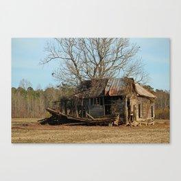 Tree Vs Cabin Canvas Print