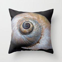 Moon snail sea shell 2863 Throw Pillow