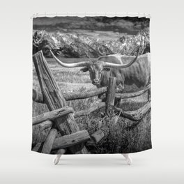 Texas Longhorn Steer by an Old Wooden Fence in Black and White Shower Curtain