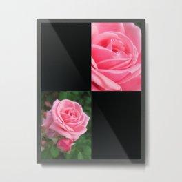 Pink Roses in Anzures 2 Blank Q2F0 Metal Print