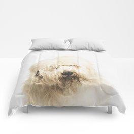 Old English Sheepdog Comforters