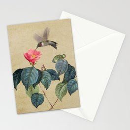 Hummingbird and Japanese Camillea Stationery Cards