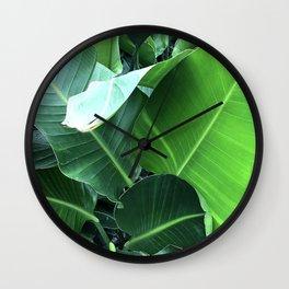 Lavish, Lush Banana Leaves Elegant Close-Up Wall Clock