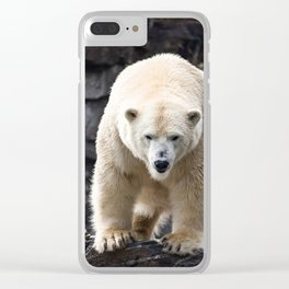 Polar Bear Portrait Clear iPhone Case