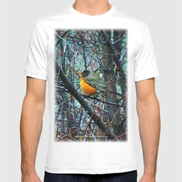 Red Robin - Round Robin - Jeronimo Rubio Photography 2016 (All Over) T-shirt