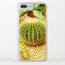 Golden Ball Cactus Clear iPhone Case