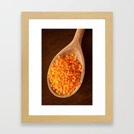 Healthy food red lentils on wooden spoon Framed Art Print