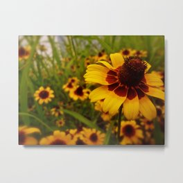 Flowers are the earth laughing Metal Print