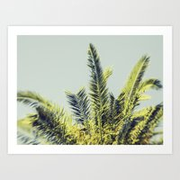 palm Art Prints featuring Palm by Esther Ní Dhonnacha