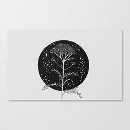 Yarrow Canvas Print