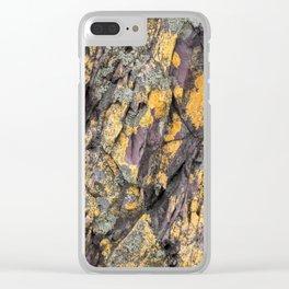 Hallett Rock Clear iPhone Case