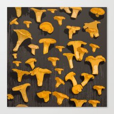 Chantterelles On A Dark Grey Background - Autumn Harvest - #Society6 #buyart Canvas Print