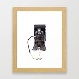 kodak elk Framed Art Print