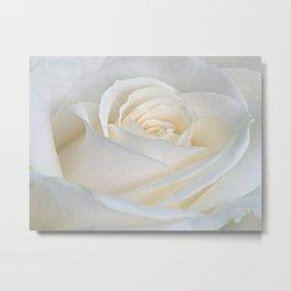 White Roses  , White Roses  games, White Roses  blanket, White Roses  duvet cover, Metal Print