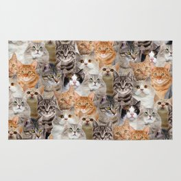 cats pattern lot of funny animals cheesy crazy Rug