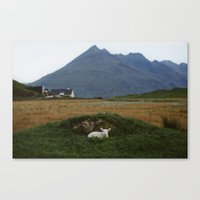 lamb Canvas Prints featuring Lamb by The Kitcheners