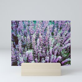 flower photography by Božo Radić Mini Art Print