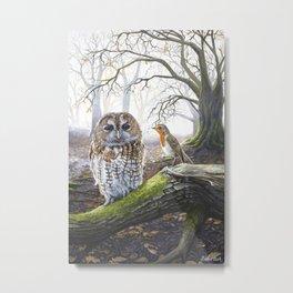 The Messenger - Acrylic Painting - Owl and Robin Metal Print