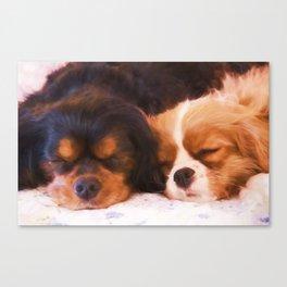 Sleeping Buddies Cavalier King Charles Spaniels Canvas Print