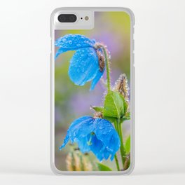 Himalayan Blue Poppies, after the rain Clear iPhone Case
