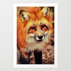 The Fox - for iphone Art Print
