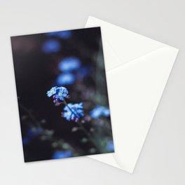 Backyard Flowers Stationery Cards