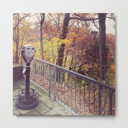 Youngstown's Mill Creek Park Metal Print