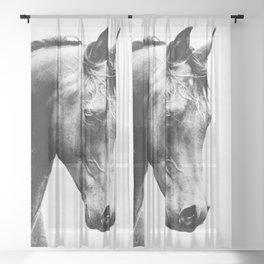 Horse Sheer Curtain