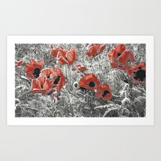 Poppy - blowing in the wind #02 Art Print