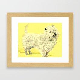 Fluffy White Cairn Terrier Dog Framed Art Print