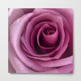 Rose Detail Metal Print