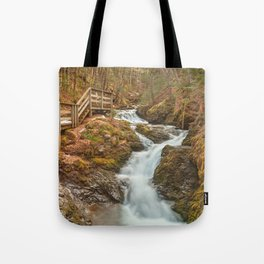 Centipede Step Falls Tote Bag