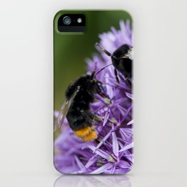 Fighting Bumble Bees iPhone Case