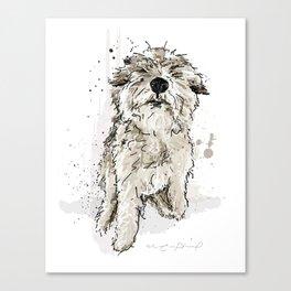 Gus the dog Canvas Print