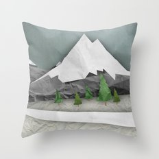 Wrinkled winter  Throw Pillow