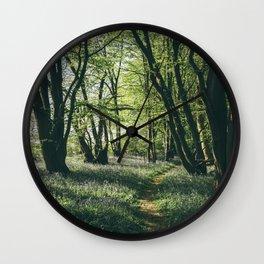 Path through Bluebells growing wild in natural woodland. Wayland Wood, Norfolk, UK. Wall Clock