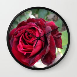 Portrait of a Rose Wall Clock