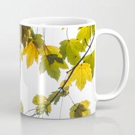 Green And Yellow Maple Leaf Coffee Mug