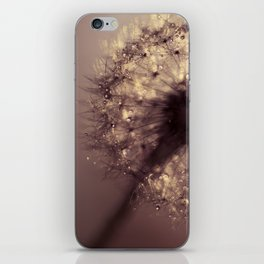 dandelion gold iPhone Skin