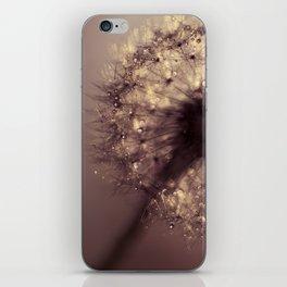 dandelion gold iPhone Skin