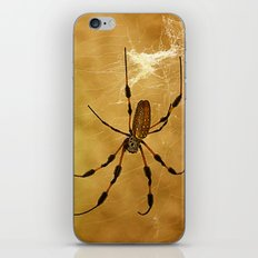 Banana Spider iPhone & iPod Skin