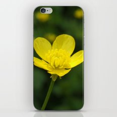 Buttercup iPhone & iPod Skin