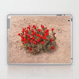 Sandia Cactus Flowers Laptop & iPad Skin
