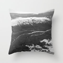 Glacier Buddies Throw Pillow
