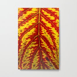 Tiger Leaf Metal Print